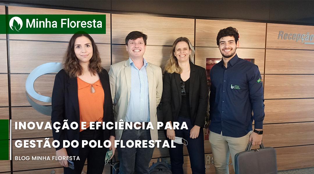 Implementação do Sistema SAP para gerenciamento do Polo Florestal